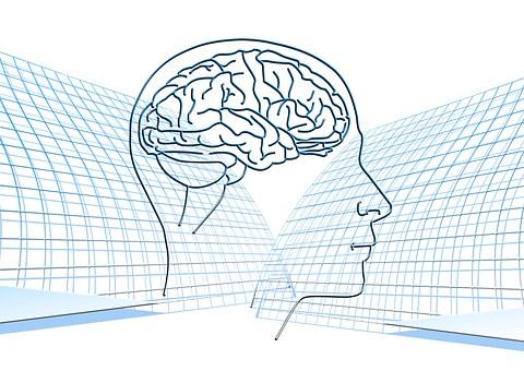Le Cerveau : Booster votre Mémoire !