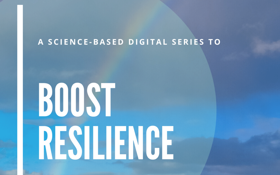 Boost Resilience – Webinar Series French Chamber of Great Britain