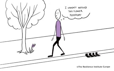 When will you go for a mindfulness walk today?